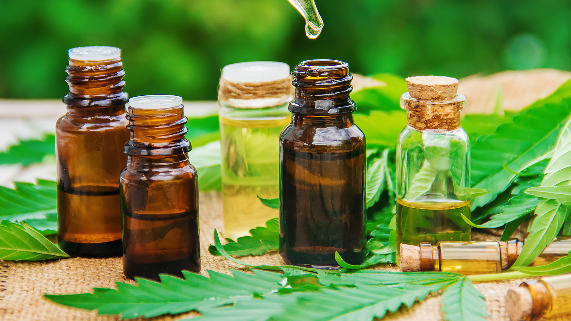 How To Make Cbd Oil From Hemp With No Thc